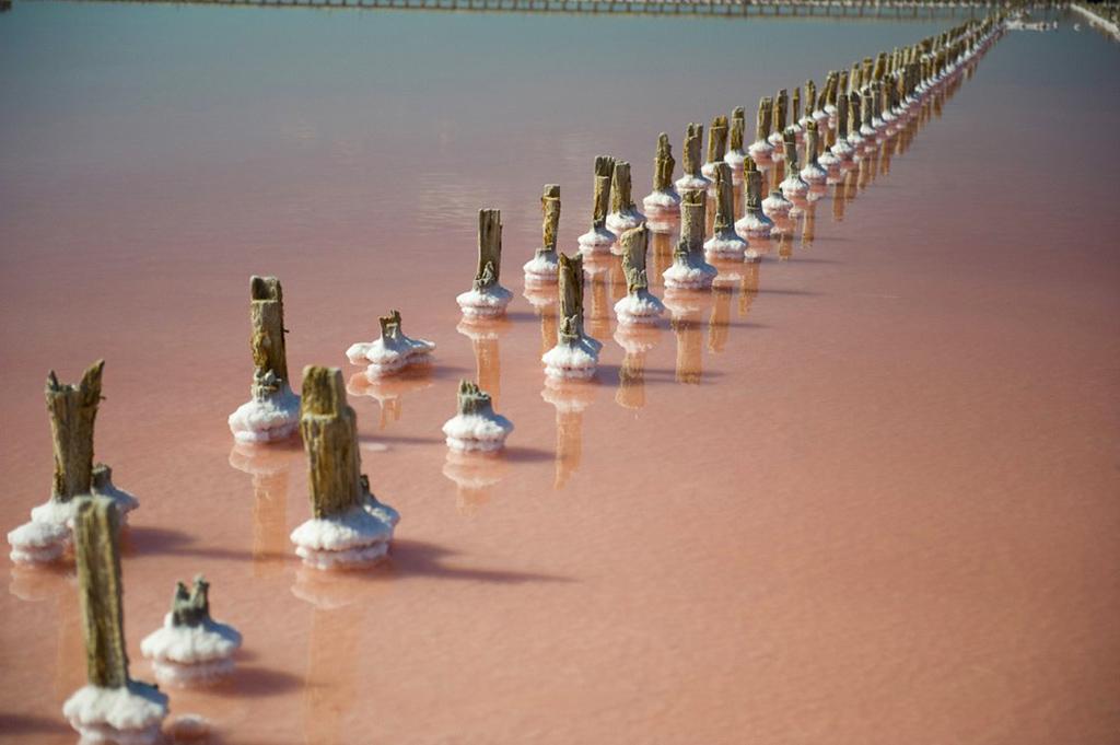 Солёные озёра под Евпаторией: Сасык-Сиваш