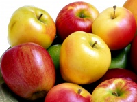 Регулярное употребление яблок способствует продлению срока жизни человека
