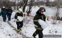 В Москве прошла операция по спасению пары лебедей с пруда