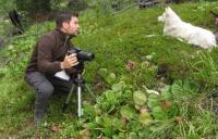 Ученый доказал, что собаки способны к сопереживанию