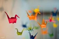 8 марта в Евпатории проведут акцию «Журавлики счастья»