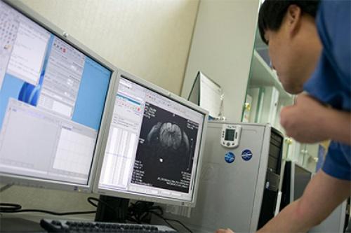 Нейробиологи объяснили феномен дежавю