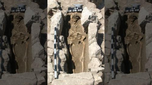 Кости из Трои рассказали о древних инфекциях