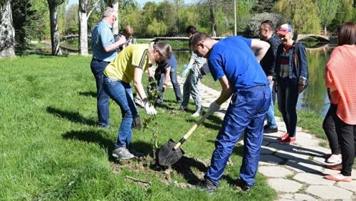 В Крыму намерены привлечь школьников к возрождению лесополос