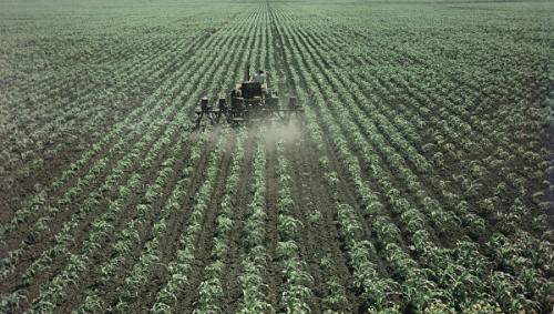 Крымским аграриям субсидируют затраты на борьбу с особо опасными вредителями