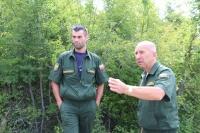 Севастопольское лесничество усиливает патрулирование леса