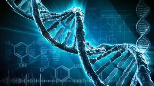 ДНК превратили в компьютерный вирус