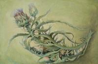 В Ялте презентуют арт-проект Виктории Меренковой «Ботаника. Внутри меня»