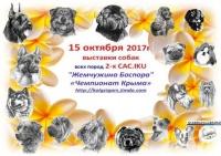 В Керчи покажут самых красивых собак