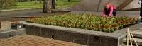 До конца года в Симферополе планируют благоустроить 22 двора, три сквера и парк им. Гагарина