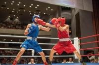 В Ялте пройдет боксерский турнир