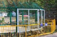 В Детском парке Симферополя появился стеклянный вольер с волками