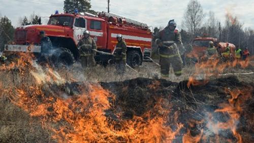 На 24-26 сентября в Крыму объявлена высокая пожароопасность