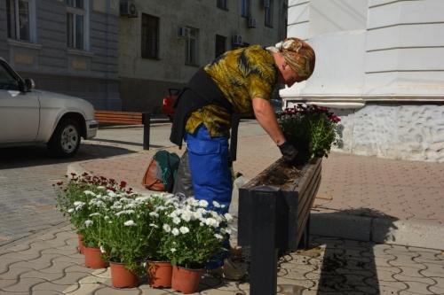 Евпаторию украсили осенними цветами