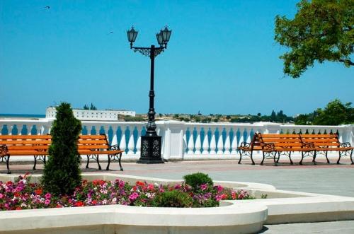 Севастопольские «Парки и скверы» готовят закупку цветов на 13 млн рублей