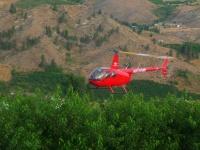 Крымские виноградники будут опылять при помощи вертолетов
