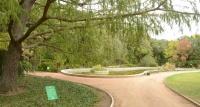 Парк «Монтадор» в Никитском ботсаду откроют 31 октября