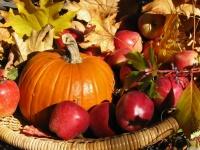 Осенняя ярмарка в Евпатории пройдет на новом месте