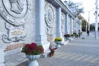 На Театральной площади в Евпатории расцвели хризантемы