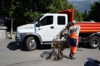 В Ялте за неделю с улиц города вывезли три тысячи кубических метров бытового и более 50 тонн строительного мусора