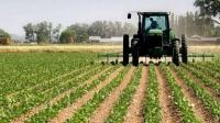 Севастополь в этом году потратит больше 250 миллионов на поддержку сельхозпроизводителей