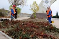 К началу весны около 100 цветников украсят районы Севастополя