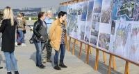 В Севастополе выбрали лучший проект парка в Артбухте