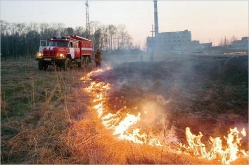Количество возгораний сухой растительности в Крыму возросло в текущем году на 21%