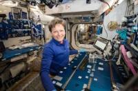 Ученые научились идентифицировать микробов в космосе
