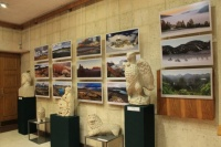 В галерее Керчи открылась выставка фотографа из Челябинска