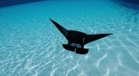 Создан подводный беспилотник в виде морского ската