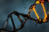 «Воскрешена» ДНК давно умершего человека