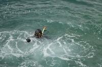 В Ялте водолазы «Крым-Спаса» начали работу по очистке акватории пляжей