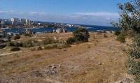 Севастополю вернут 49 миллионов и кусок парка Победы