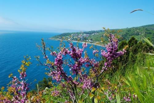 Крым на майские праздники посетило свыше 180 тысяч туристов