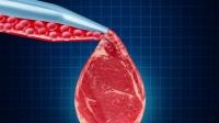 На прилавках появляется искусственное мясо