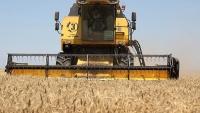 Крым за 600 млн рублей обновил половину зерноуборочной техники