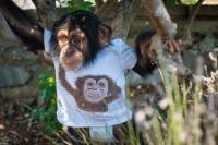 В зоопарке отеля «Ялта-Интурист» продолжается беби-бум