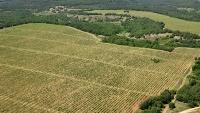 В Крыму земельных нарушителей оштрафовали на 7 млн рублей