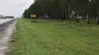 Сотрудники «Крымавтодора» очистили от карантинных растений более 22 тыс км обочин крымских дорог