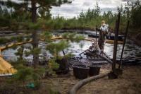 Российские биологи нашли новые бактерии которые могут очистить почву от загрязнения нефтью