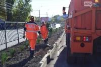 В крымской столице высадили 130 кустов юкки