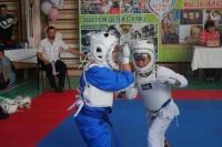 В Ялте соревновались юные мастера КУДО