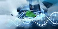 Разработан долговечный и дешевый катализатор для получения водорода