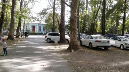 Власти Симферополя с начала года зафиксировали 250 случаев парковки автомобилей в зеленых зонах