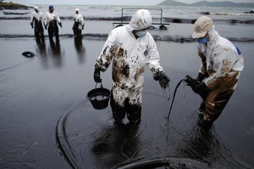 Российские ученые представят технологию очистки от нефти дна арктических морей