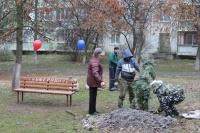 Во дворах Симферополя высадили 30 голубых елей