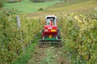 Крым станет пилотным регионом нового проекта «Росагролизинга» по поставке техники для виноградарства