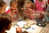 В Крыму льготникам ужесточат правила посещения музеев