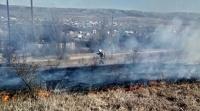 Крымские пожарные с начала года потушили более 250 возгораний сухостоя